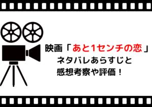 映画「あと1センチの恋」ネタバレあらすじと感想や評価も!挿入歌と結末や名言が素晴らしいラブストリーの名作!
